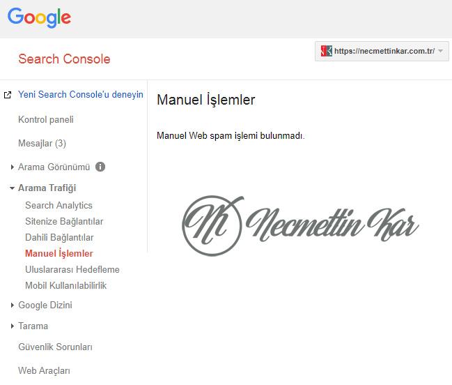 google-manuelspam-sorgulama-sayfasi